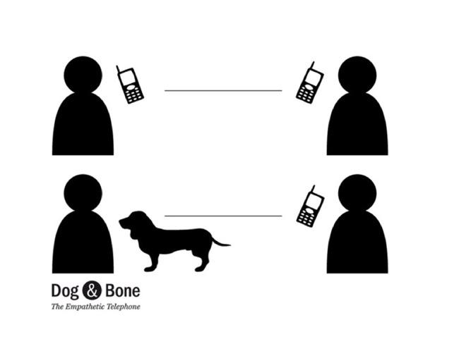 Dog&Bone maxmollon concept